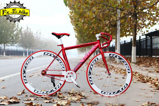 Xe Đạp Single Speed Kturo K2